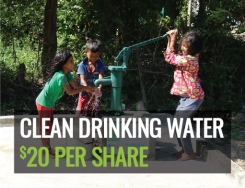 RMN - Clean Drinking Water $20 per share