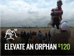 RMN - Elevate an Orphan $120